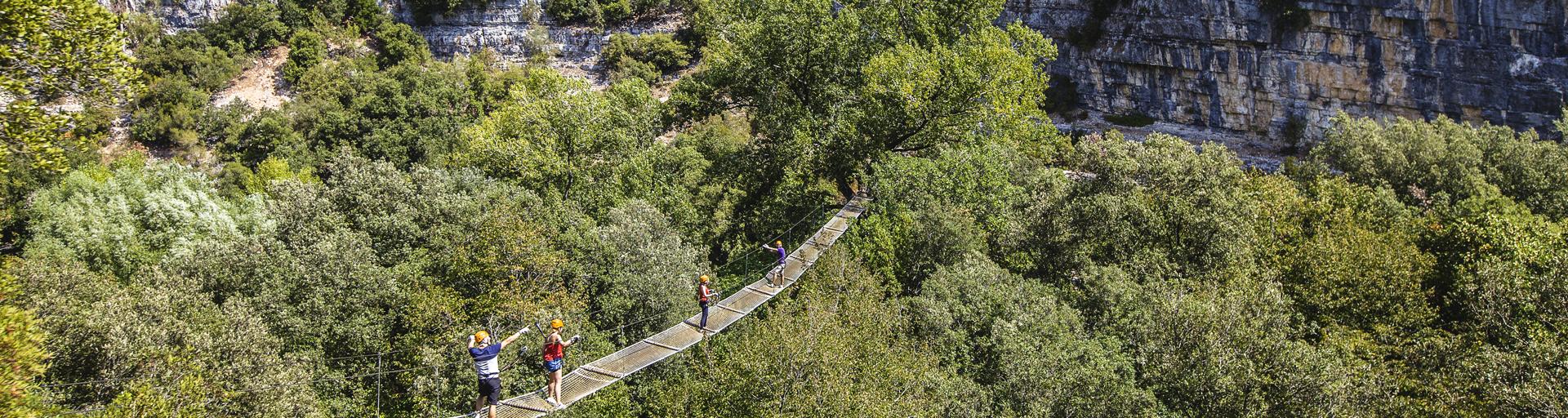 Au dessus des arbres un immense pont de cordes et filet