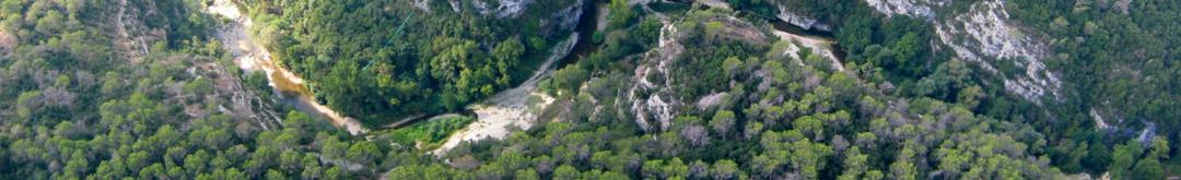 Canyon Forest vu du ciel